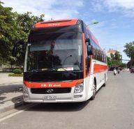 Thuê xe 45 chỗ đi Núi Thần Tài Đà Nẵng